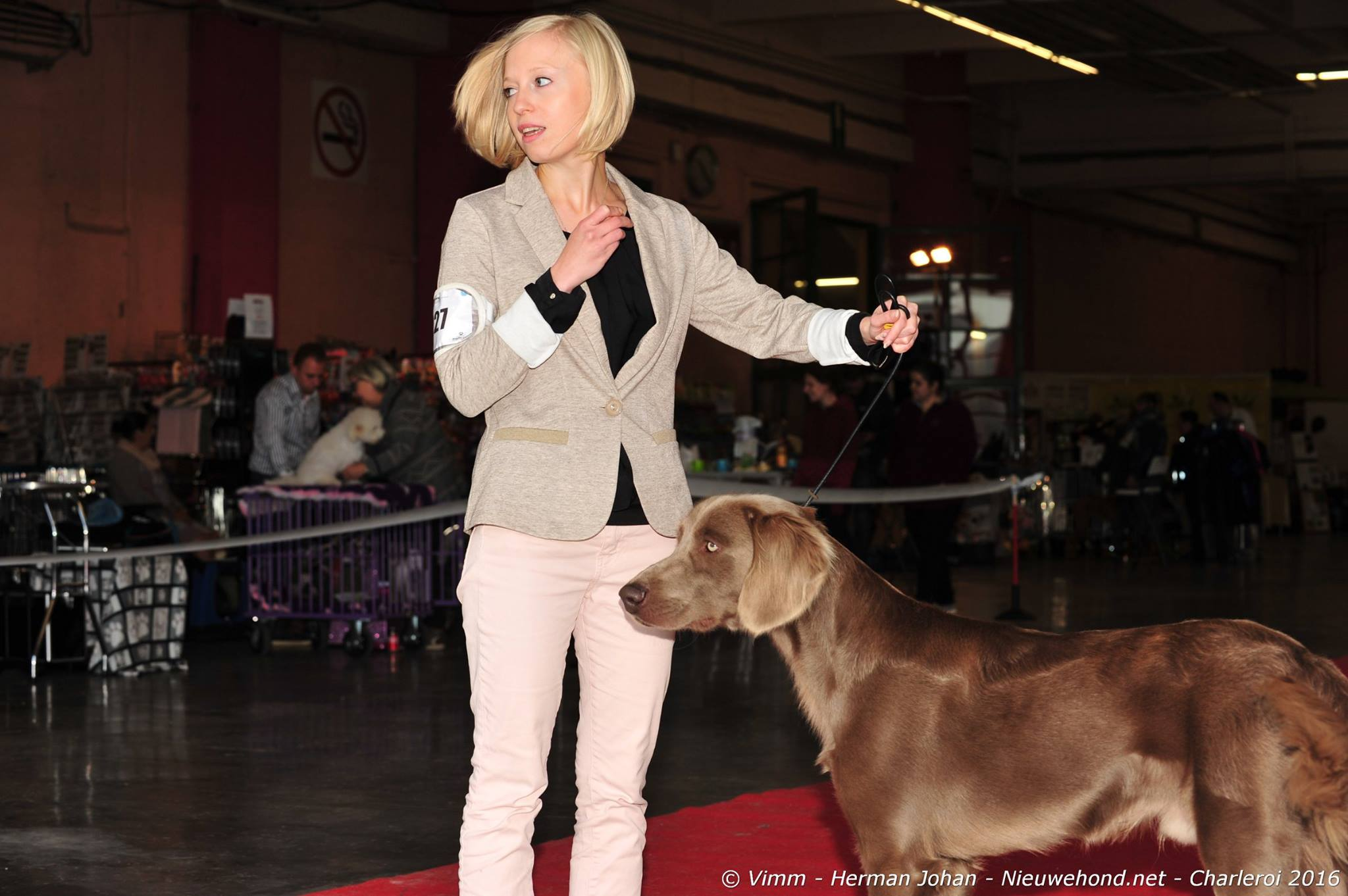 dogshow-de-nieuwehond