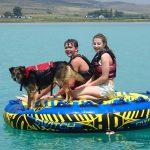 Vakantie met de honden tips