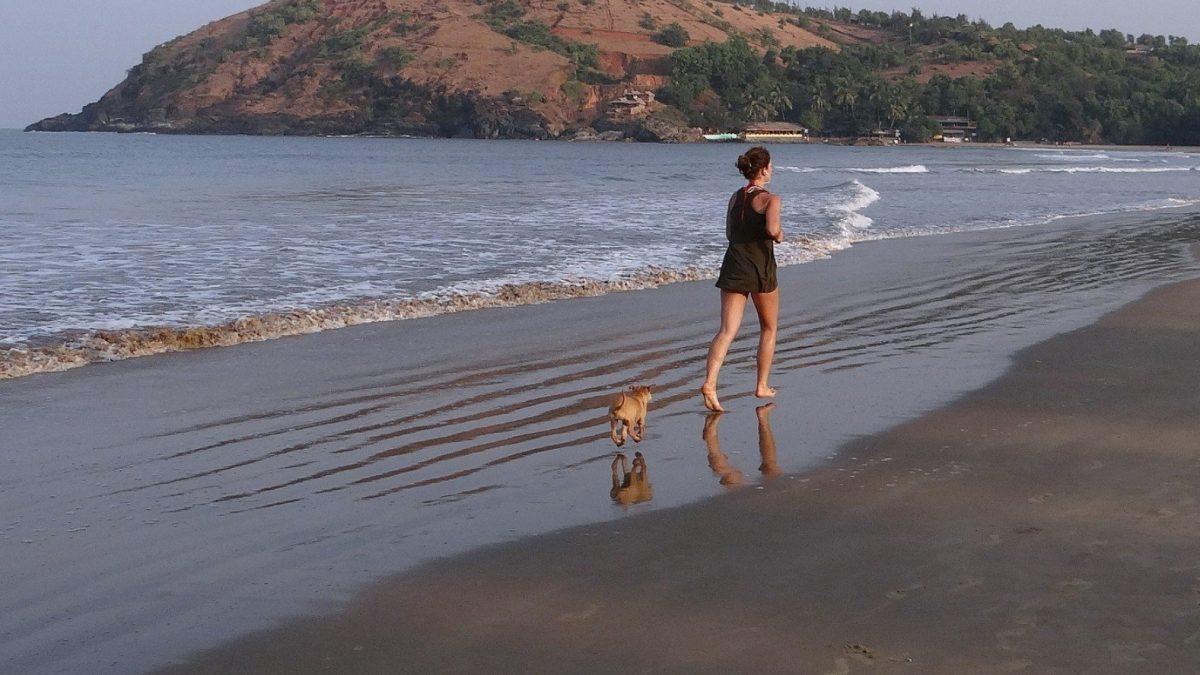 joggen met je hond is gezond