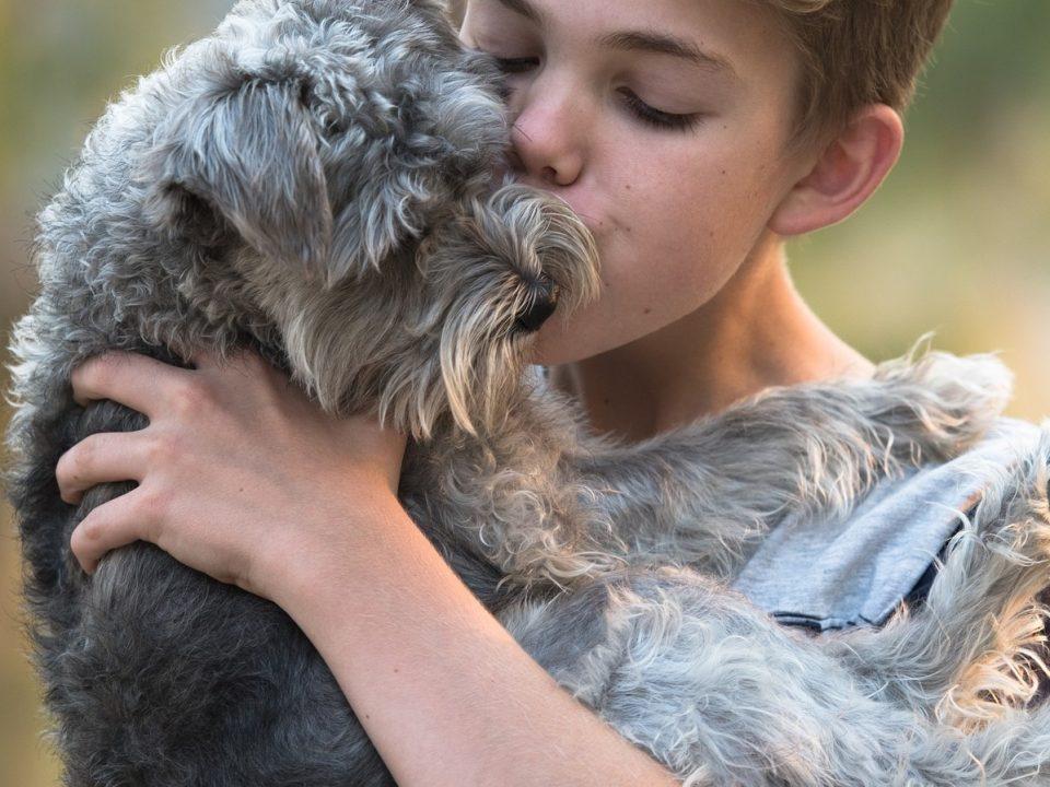 anders denken en anders omgaan het je hond