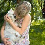 Honden ervaren gevoelens net als mensen
