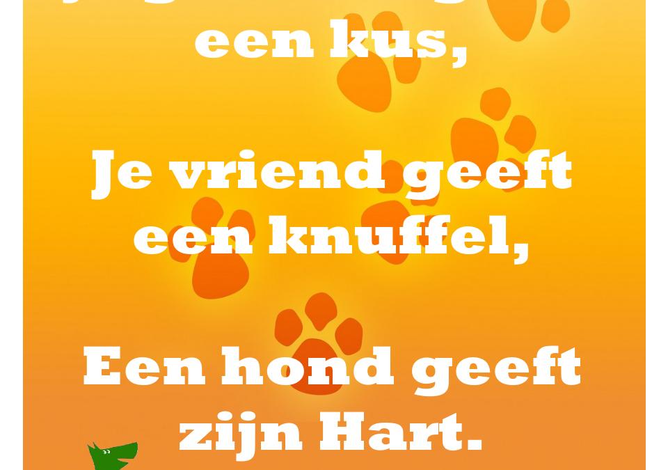 Een hond geeft je zijn hart