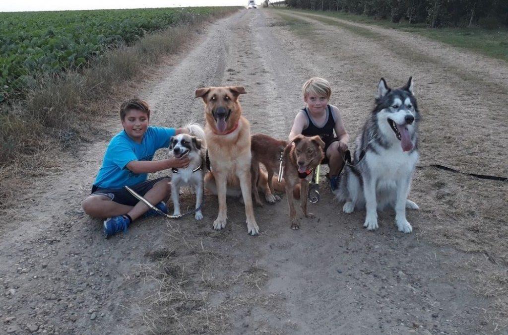 Evelien met kinderen en adoptiehonden - evelien kinderen en honden 1024x701 1
