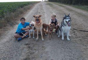 De kinderen vinden het zalig om samen met mama en papa te mogen zorgen en te genieten van hun dieren.