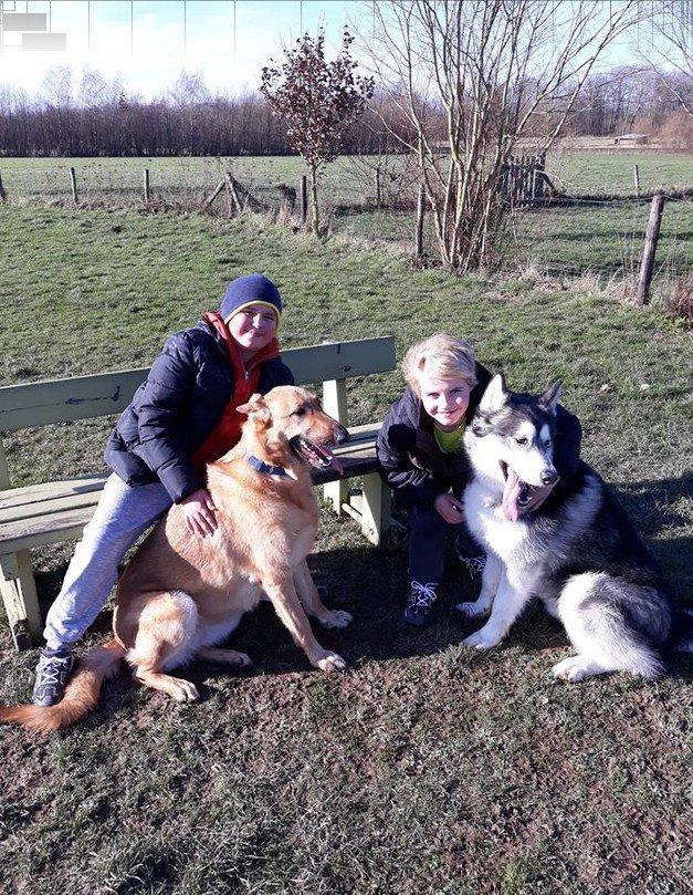 evelien kinderen en honden bank