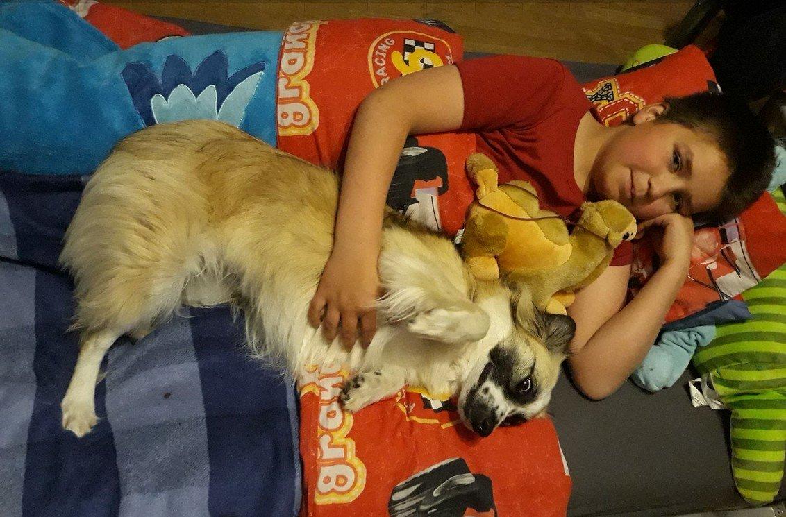evelien kinderen en honden bed