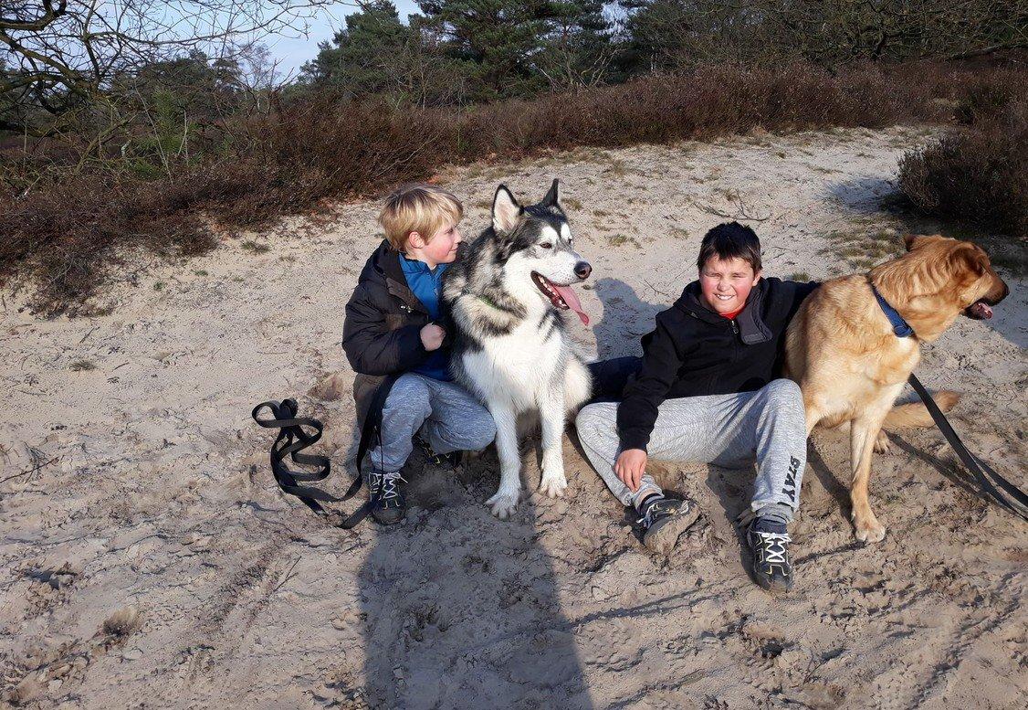 evelien kinderen en honden strand