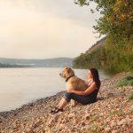 Vakantiehuisjes en parken waar honden toegelaten zijn