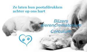 Dieren- crematoriums in België - bilzen crematorium e1561575377276