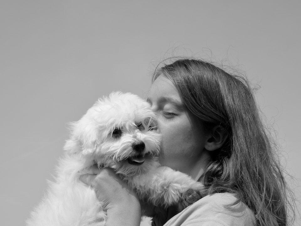 Hondennamen teefje - Meisjesnamen voor honden - hondennaam teefje