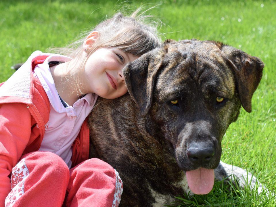 kinderen met huisdieren