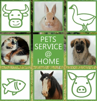 petsservice at home