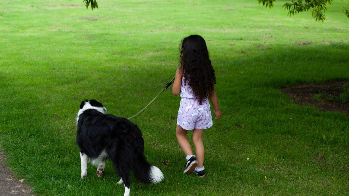 Kan ik besmet worden met het Coronavirus via mijn hond