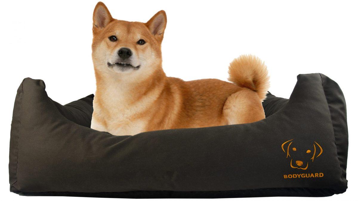 De juiste plaats voor een hondenbed